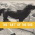 "The ""Art"" of the Dog Comes To Town"